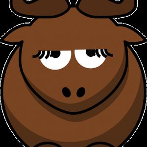 Quesos de Bufala