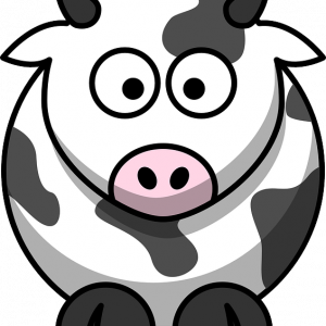 Quesos de Vaca